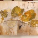 Leaf Magic No 258
