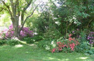 berrington cottages garden