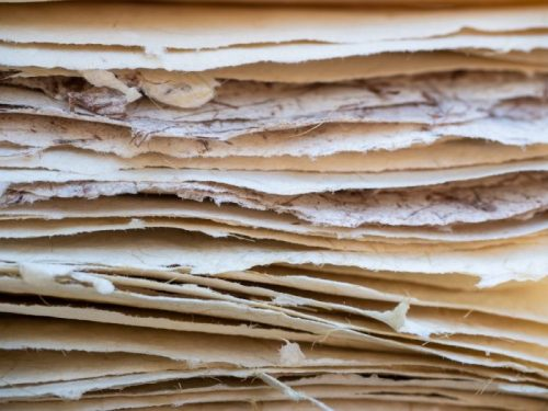 Papermaking for Beginners